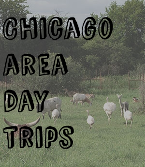 Chicago Area Day Trips